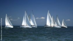Photo: Sailboats on the open sea