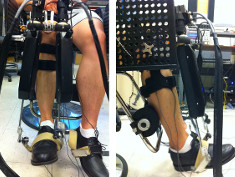 Photo: Front and side view of a volunteer wearing Anklebot