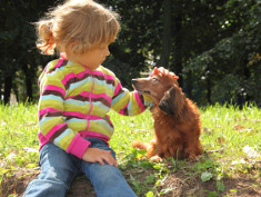 Photo: Little girl pets a little dog