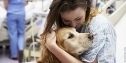 Photo: Woman in hospital cuddles with a dog