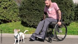 Photo: Daniel Wehrmann in his wheelchair and dog Nero; Copyright: Daniela Schwarzer