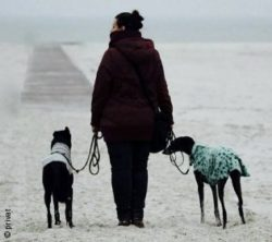 Photo: Simone Plaschke at the beach with two dogs; Copyright: private