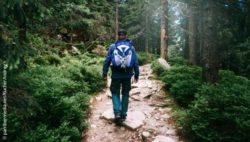 Photo: Hiker with a backpack in the woods; Copyright: panthermedia.net/KucherAndrey