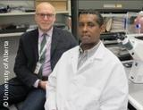Photo: Study co-authors, Fabrizio Giuliani and Yohannes Haile
