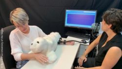 Image: Two women sit across a table, one pets a furry seal plushie, one looks at a monitor; Copyright: Ben-Gurion University of the Negev