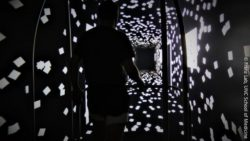 Photo: Man standing in a black hallway full of little white squares; Copyright: Franz Lab, UNC School of Medicine