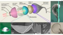 Graphic: Structure of the artificial eye with 3D retina; Copyright: HKUST