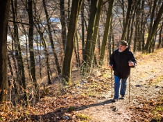 Photo: Older man who is nordic walking in the forest