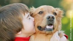 Photo: Young boy with his dog, kissing him; Copyright: panthermedia.net/sonyae