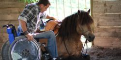 Photo: Timo Ameruoso sits in his wheelchair ready to sit on the horse which is laying down for him; Copyright: private
