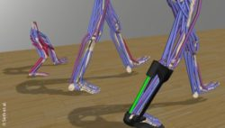 Photo: Physics-based simulations of movement on a screen; Copyright: Seth et al.