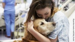 Photo: Woman in hospital cuddles with a dog; © panthermedia.net/Cathy Yeulet