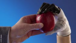 Photo: The biomimetic hand prosthesis Hannes takes an apple from a human hand; Copyright: IIT-INAIL