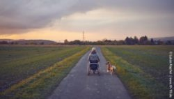 Photo: A wheelchair user with her dog in nature; Copyright: Lukas Kapfer | www.th-10.de