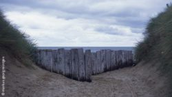 Photo: beach with a wooden barrier at Utah Beach (France)