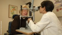 Photo: Female doctor examines the eyes of a woman; Copyright: National Eye Institute