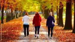 Photo: Three women while Nordic walking in the park; Copyright: panthermedia.net/DarioStudios