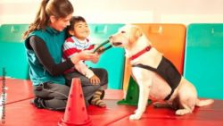 Photo: Boy with a disability undergoing animal-assisted rehabilitation with a dog; Copyright: PantherMedia/tifonimages