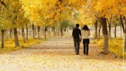 Photo: young couple takes a walk in a park in autumn; Copyright: panthermedia.net/chepko