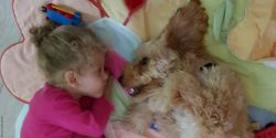 Photo: Young girl lying on a bed with her dog; Copyright: maria_ante_portas