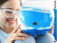 Photo: Young girl with a fish in a fish bowl