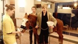 Photo: Pony 13 with hospice director Angelika Behm (left) and owner of the pony Hinrika Höges (right); Copyright: Diakonie-Hospiz Wannsee