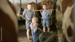 Photo: Three boys standing in a cowshed; Copyright: University of Zurich