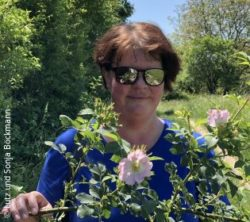 Photo: Woman with sunglasses surrounded by roses in nature - Sonja Böckmann; Copyright: Lutz and Sonja Böckmann